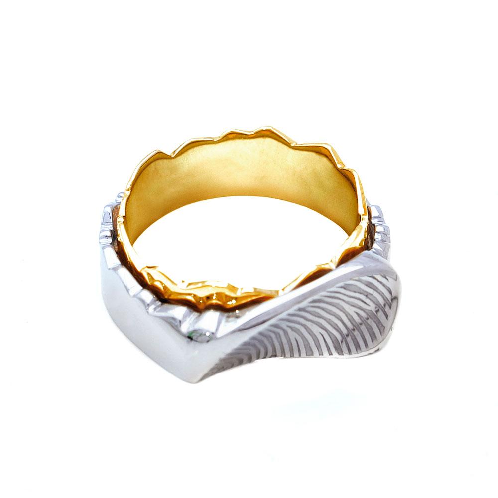 Twee ringen in elkaar